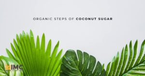 Organic Steps of Coconut Sugar